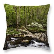 Spring Dogwoods On The Little River - D003829 Throw Pillow