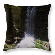 Spring Falls I Throw Pillow