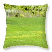 Spring Farm Landscape In Maine Throw Pillow