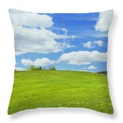Spring Farm Landscape With Blue Sky In Maine Throw Pillow