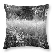 Spring Field Black And White Throw Pillow