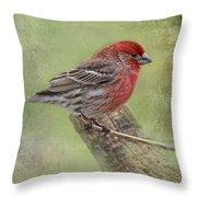 Spring Finch Throw Pillow