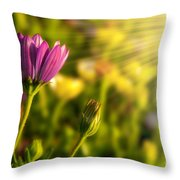 Spring Flower Throw Pillow by Carlos Caetano
