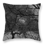 Spring For Leaves  Throw Pillow