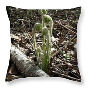 Spring Forest Fern Throw Pillow