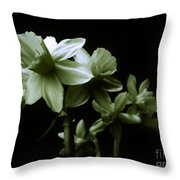 Spring Form Throw Pillow
