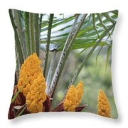 Spring Fruit Throw Pillow