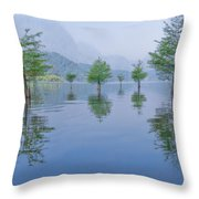 Spring Hanging Garden Throw Pillow