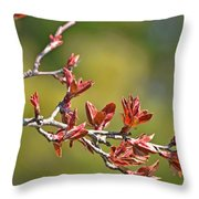 Spring Leaves Greeting Card Blank Throw Pillow