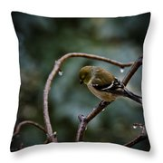 Spring Melt Waters Throw Pillow