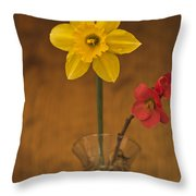 Spring On Display Throw Pillow