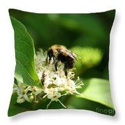 Spring Pollination Throw Pillow