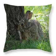 Spring Rabbit Throw Pillow