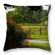 Spring Ranch Throw Pillow