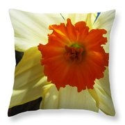 Spring Shines Brightly Throw Pillow