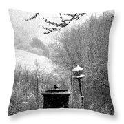 Spring Snowstorm 2012 Throw Pillow