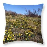 Spring Surprise Franklin Mountains Throw Pillow
