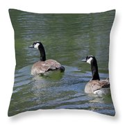 Spring Thaw Water Geese Throw Pillow
