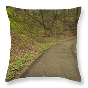 Spring Trail Scene 4 Throw Pillow