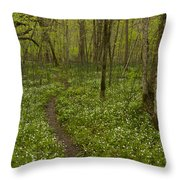 Spring Trail Scene 5 A Throw Pillow