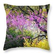 Spring Trees In San Antonio Throw Pillow