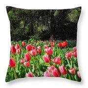 Spring Tulips 1 Vertical Throw Pillow