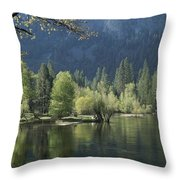 Spring View Of The Merced River Throw Pillow