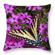 Spring's Beauty Throw Pillow by Crystal Joy Photography
