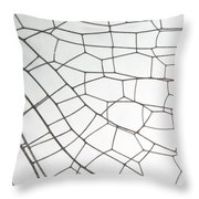 Springtime Darner Dragonfly Wing Throw Pillow