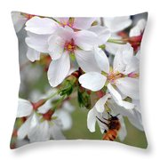 Springtime Weeping Cherry Tree Throw Pillow