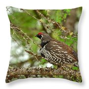 Spruce Grouse Throw Pillow