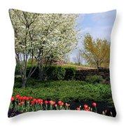 Sprung Spring Throw Pillow