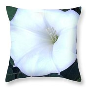 Spuds Throw Pillow