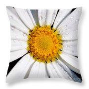 Square Daisy - Close Up Throw Pillow