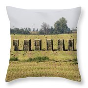 Square Hay Bales Throw Pillow