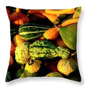 Squash In Morning Light Throw Pillow