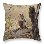 Squirrel And Cone Throw Pillow