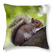 Squirrel Before Green Leaves Throw Pillow