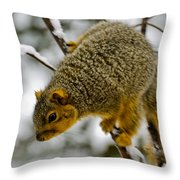 Squirrel Dive Bomber Throw Pillow