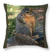 Squirrel Looking For A Hand Out Throw Pillow
