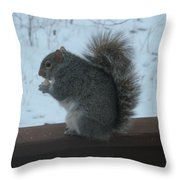 Squirrel Snack Throw Pillow