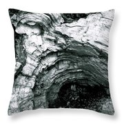 Squirrelly Look Nook Throw Pillow