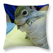 Squirrelly Throw Pillow