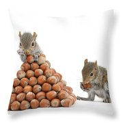Squirrels And Nut Pyramid Throw Pillow