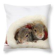 Squirrels In Santa Hat Throw Pillow