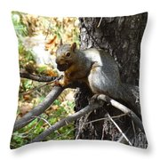 Squirrling Away Throw Pillow