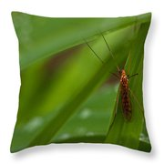 Squito Has Landed Throw Pillow