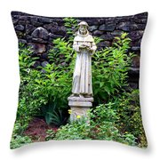 St Francis In The Garden Throw Pillow
