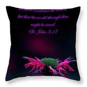 St. John 3  17  And Bee Balm Throw Pillow
