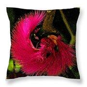 St Kitts Flora Throw Pillow